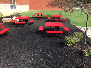 New Reading Garden at TMS