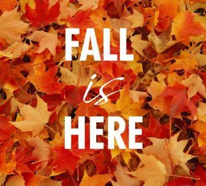 Fall is Here words on background of colorful maple leaves